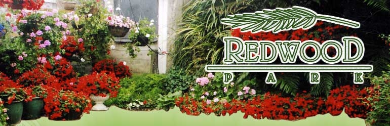 Redwood Park B&B, Cambridge, New Zealand
