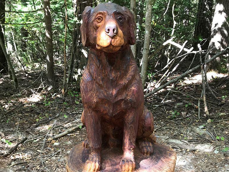 forest art dog