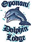 Opononi Dolphin Lodge providing Opononi accommodation