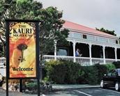 close to Matakohe Museum