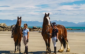 Orepuki Horse Treks