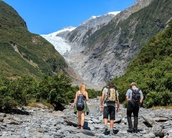 walk through forest to get the glimpse of Franz Josef Glacier