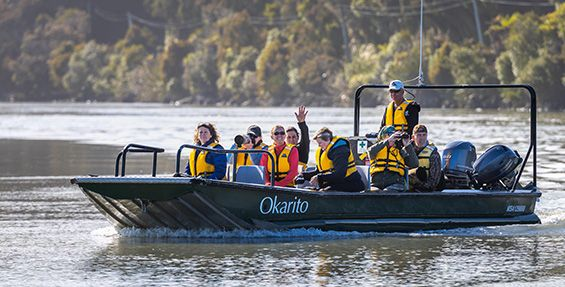 Discover Okarito Boat and Walk Tour Package