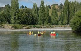 explore Whanganui River