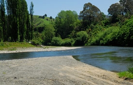 riverbank where Ongarue and Whanganui rivers meet