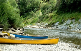 kayaking in Whanganui River