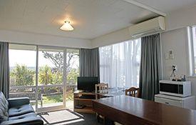 1-bedroom apartment - living area