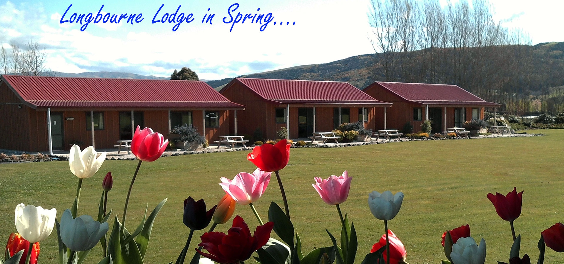 motel units located on 5 acres of landscaped land