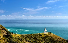 Fuller's Greatsights - Cape Reinga Wanderer Day Tour