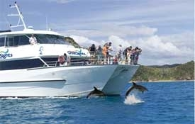 Fuller's Greatsights - Dolphin Cruise To The Hole In The Rock