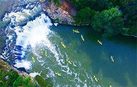 Kayak Cruises