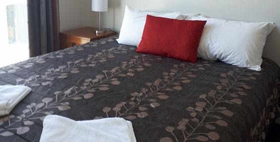 accessible studio queen-size bed