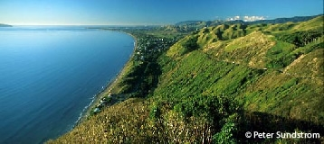 activities, attractions and things to do in Paraparaumu, Kapiti Coast