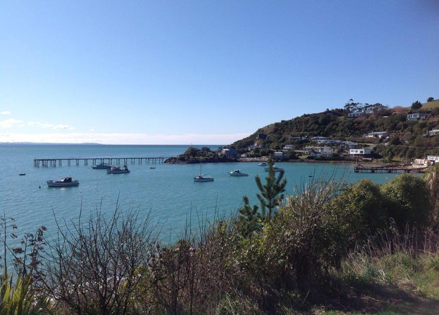 Moeraki offers many fun activities to do on the water