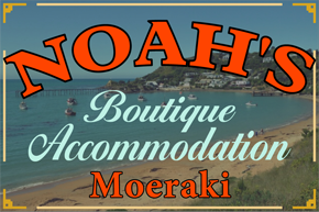 Noah's Accommodation