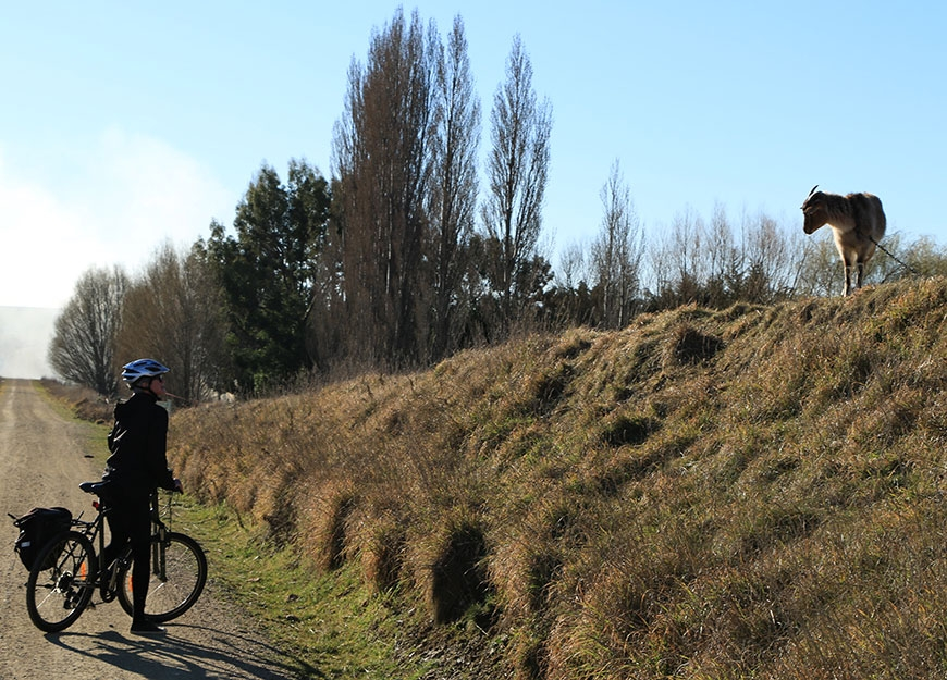 popular cycle trail runs between Clyde and Middlemarch