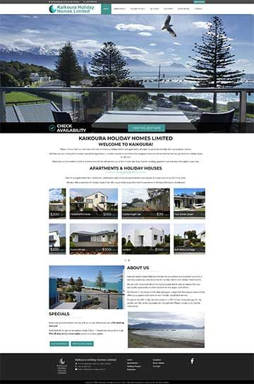 Hosted Website Template CS14