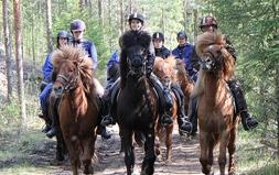 Colville horse trekking