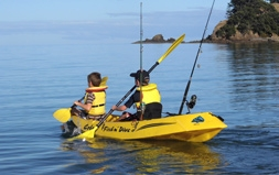 activities in Colville and Coromandel