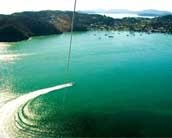 Image of Parasailing in the Bay of Islands